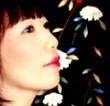 Songs of Japan