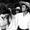 Films at the Embassy of Japan: Bloom in the Moonlight