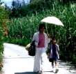Films at the Embassy of Japan:The Crying Wind
