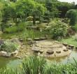 Pure Land Japanese Garden – lantern-lit evening garden