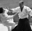 Aikido beginners course