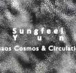 Chaos, Cosmos And Circulation
