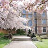 Doddington Hall Cherry Blossom Festival