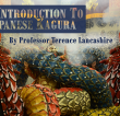 An Introduction to Japanese Kagura by Professor Terence Lancashire