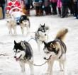 Visit Korea #7: Taebaek Snow Festival (THE EAST Campaign in Association with Korea Tourism Organization)