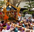 Matsuri (Japanese festivals)