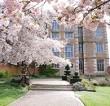 Doddington Hall Cherry Blossom Festival