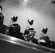 TATSUYA DONKAI Photo exhibition 【SPIRIT OF KYOTO】